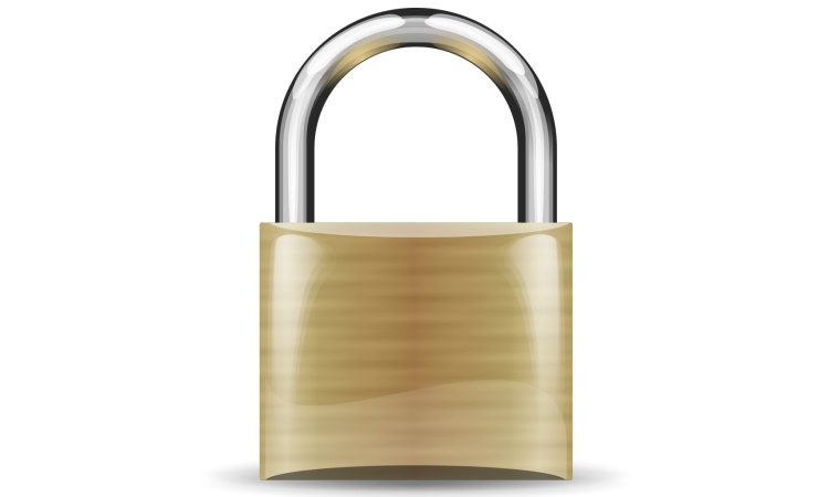 SSL Security (padlock image)